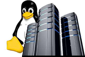 Hosting Linux Empresarial Peru